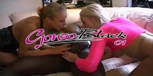 Gonzo Black 1 ...(Complete French Movie) F70