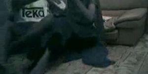 Super rare spycammed sex video from bangladesh