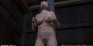 Wild torturing for sexy slave Porn Videos