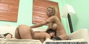 Maria Pia - BigCock Tranny Drilling A Busty Latina Pussy