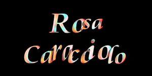Rosa Caracciolo Sex 72