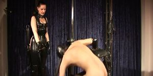 Domina trains slave cock