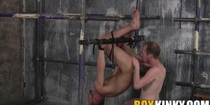 Bound homosexual gets his mouth ravaged by a big cock