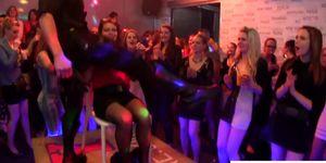 Dicksucking babes having fun at sex party