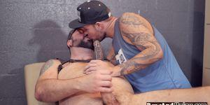Cocksucking oso gay folla culo apretado