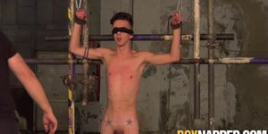 Skinny sub Jesse Evans tied up for scrotum torment
