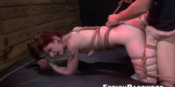 Redhead Sheena Rose tied up and bent over for sex