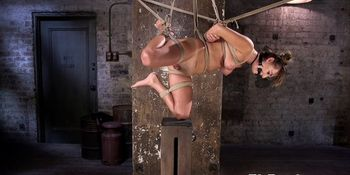 Submissive babe restrained and finger fucked